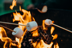 Marshmellows roosteren
