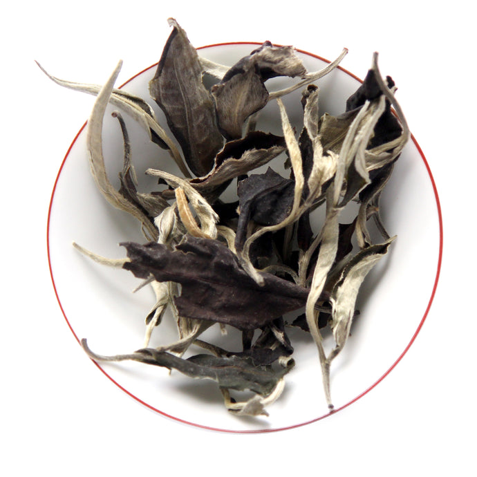 Yunnan Moonlight White