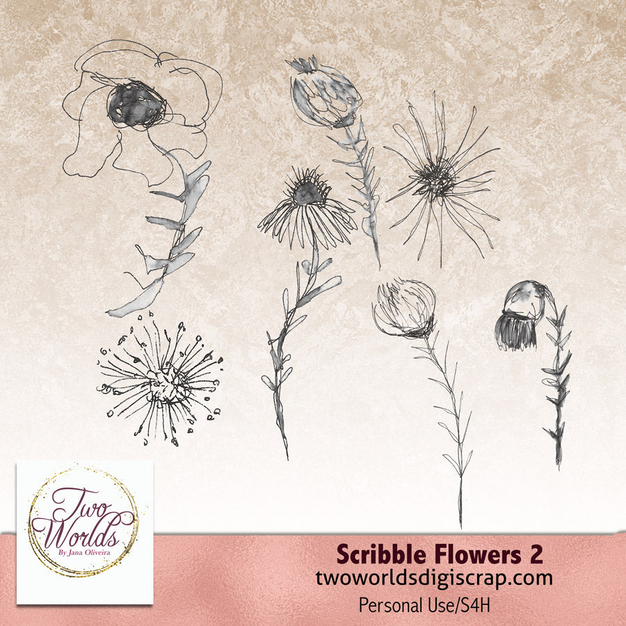 Scribbles Flowers 2 - 2Worlds Digi Scrap Supplies