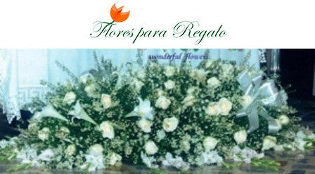 Duelo Funeral - Flores 24 Horas