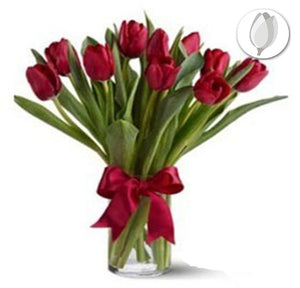 Regalo  Tulipanes - Flores 24 Horas