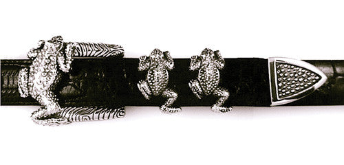 Sterling Frog 4 Pc. Buckle Set