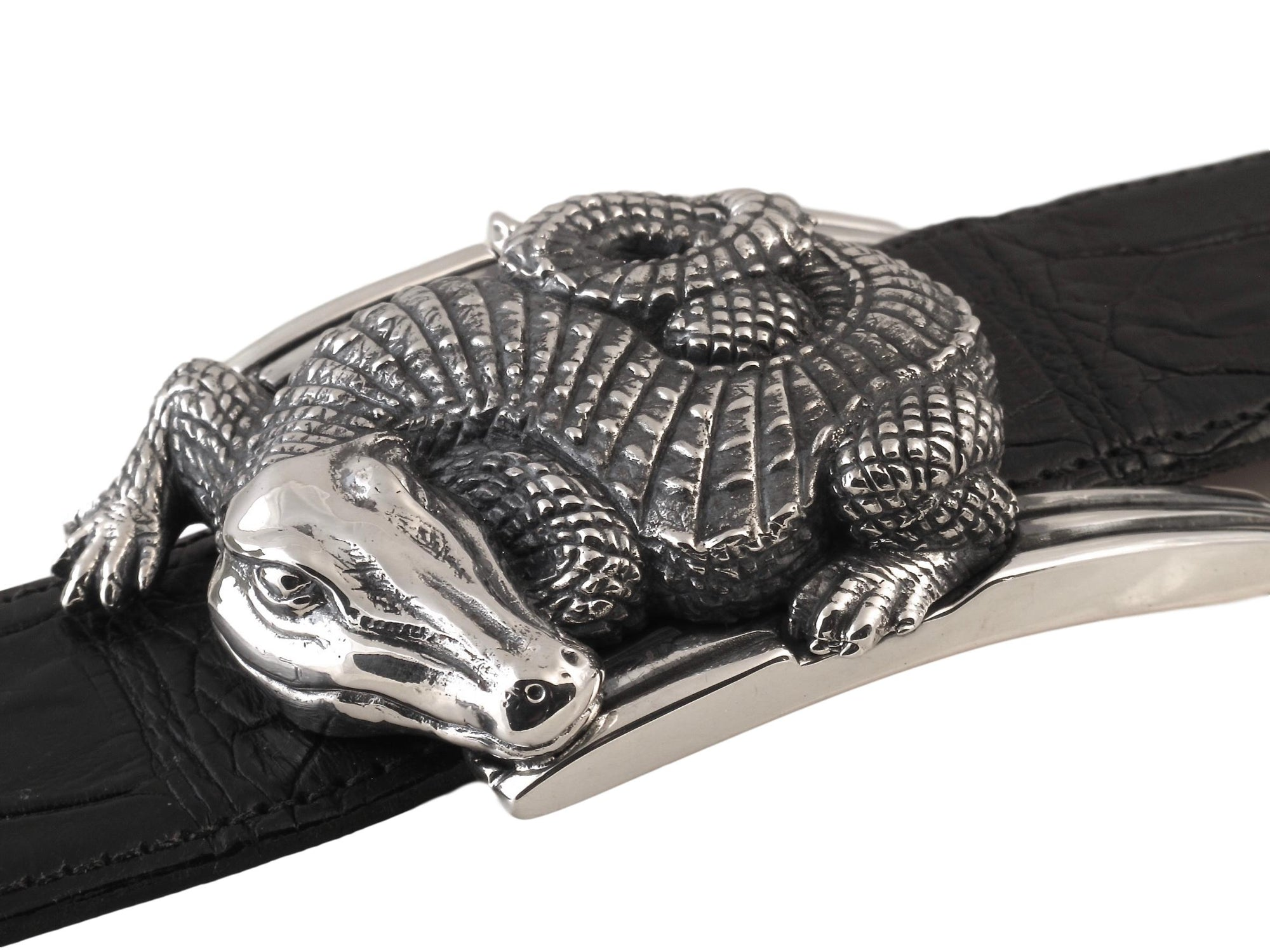 Front view of the Sterling Curved Alligator buckle showig its curled body resting on the polished buckle frame.
