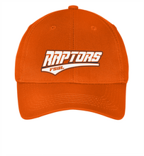 Load image into Gallery viewer, Raptors Hats-001