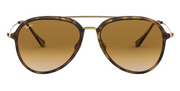 Ray-Ban 4298 - Brown Gradient