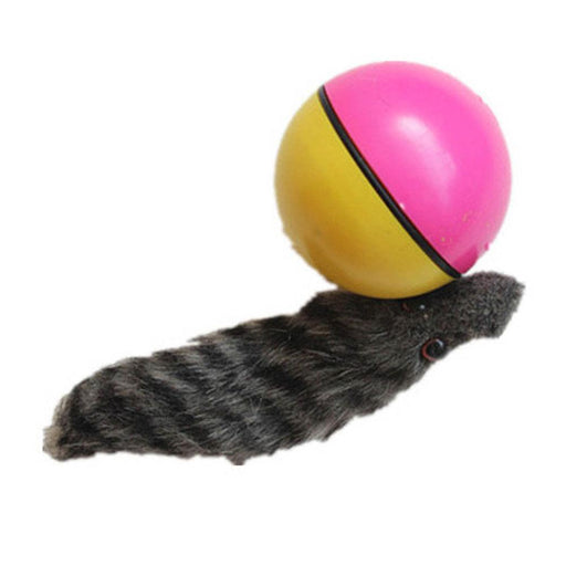 Funny Moving Attractive Electric Beaver Rolling Ball Pet Dog Cat Toy - GEEKMANN✓
