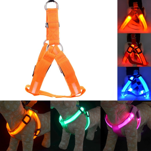 Rechargeable LED Nylon Pet Dog Cat Harness Pet Safety Belt - GEEKMANN✓