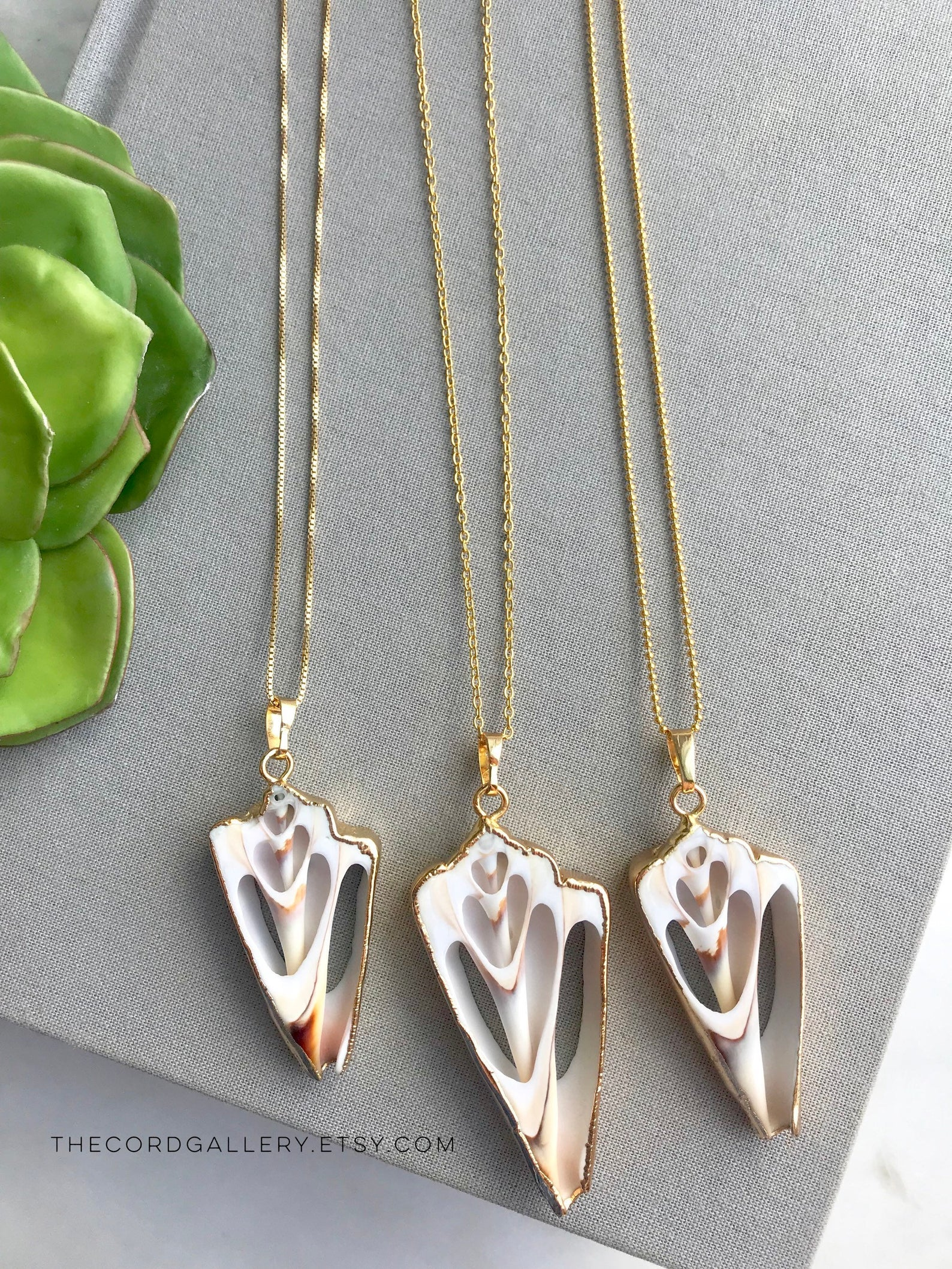 Sliced Seashell Pendant Necklace