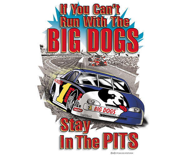 Stay In The Pits - Stock Car T-Shirt