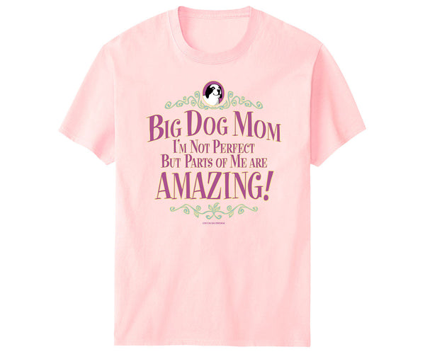 BD Mom Not Perfect T-Shirt