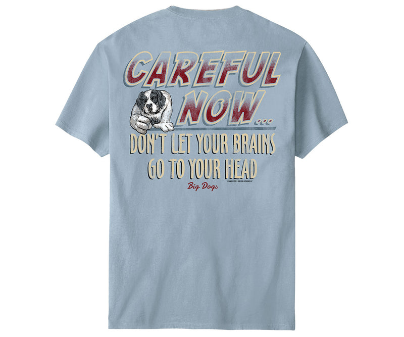 Careful Now T-Shirt