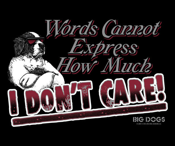 Words Can't Express T-Shirt