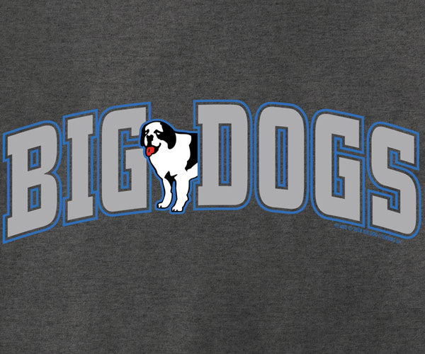 Big Dogs Chest Stripe T-Shirt