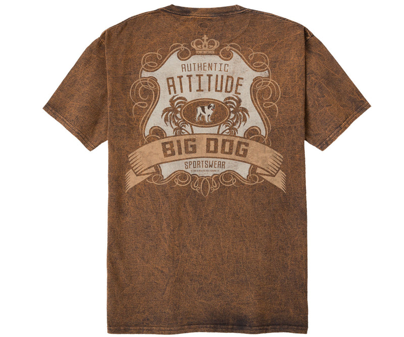 Authentic Attitude Vintage Washed Tee