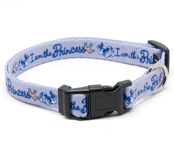 "I Am The Princess 5/8"" Collar"