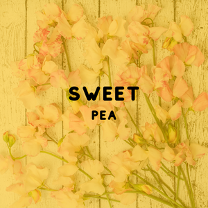Sweet Pea - Reed Diffuser Fragrance