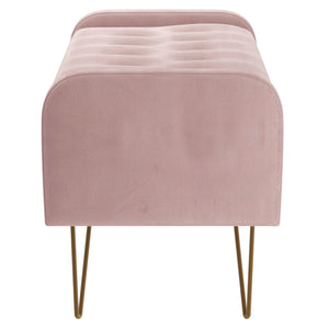 Sabel Storage Ottoman/Bench in Blush Pink with Gold Leg - Dream art Gallery