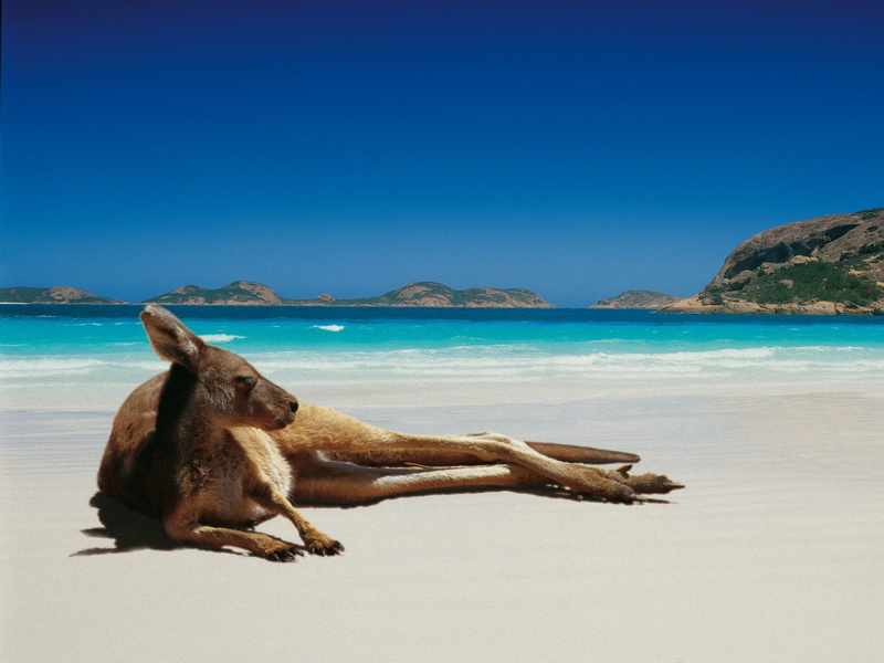 Ideas for your Travel Bucket List: The West Coast of Australia