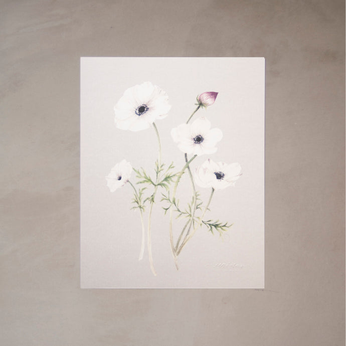 Anemones Botanical Watercolor Artprint
