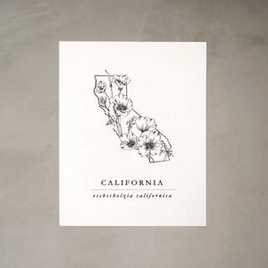 Califonia State Artprints with California Poppies Illustration