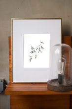 Load image into Gallery viewer, Olive Branch Botanical Watercolor Artprint 01