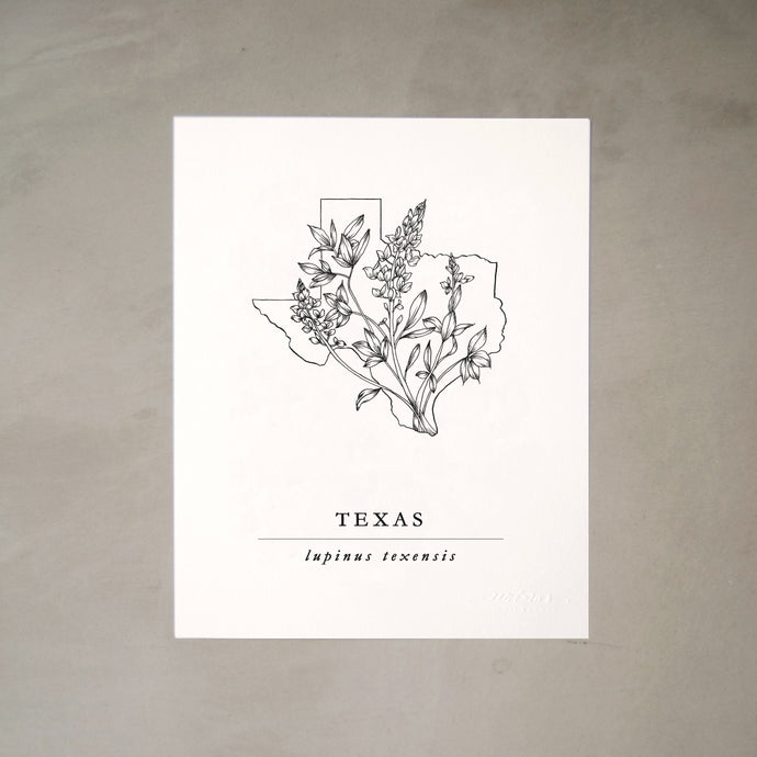 Texas State Artprints with Blue Bonnet Illustration