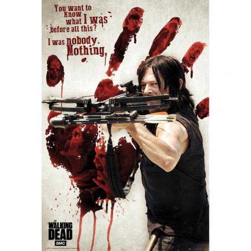 The Walking Dead Poster Daryl 253