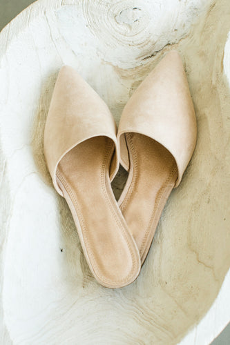 Capsule Pointy Toe Suede Slip On Mule