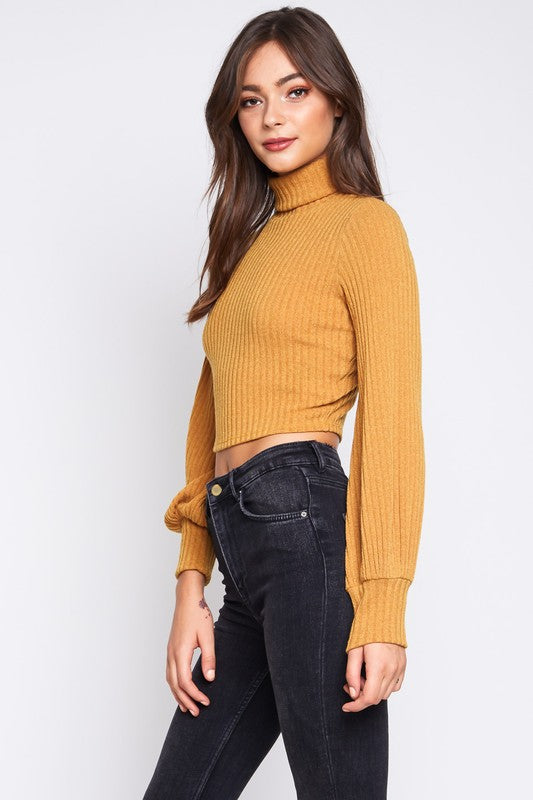 abc3794b767ff True Turtle Neck Bishop Sleeve Crop Top – THE LifeStyled CO Shop