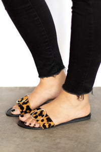 Reese Animal Print Flat Sandal w Round Gold Buckle