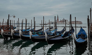 VENICE AND WWF - TOGETHER AGAINST PLASTIC POLLUTION