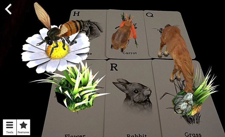 Animal 4D+ Augmented Reality Alphabet Flashcards for Kids Toys