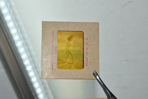 Nude Pinup Transparent Mail Order Slide 1950s Burlesque Girl On Beach Erotica 2""