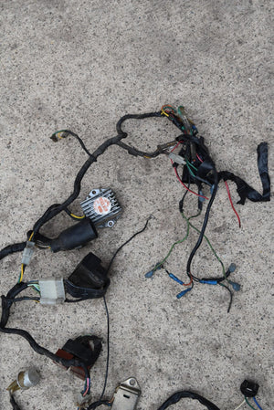 GL1000 Wiring Harness Motor Loom Honda Goldwing 1000 1975-1977 Original OEM