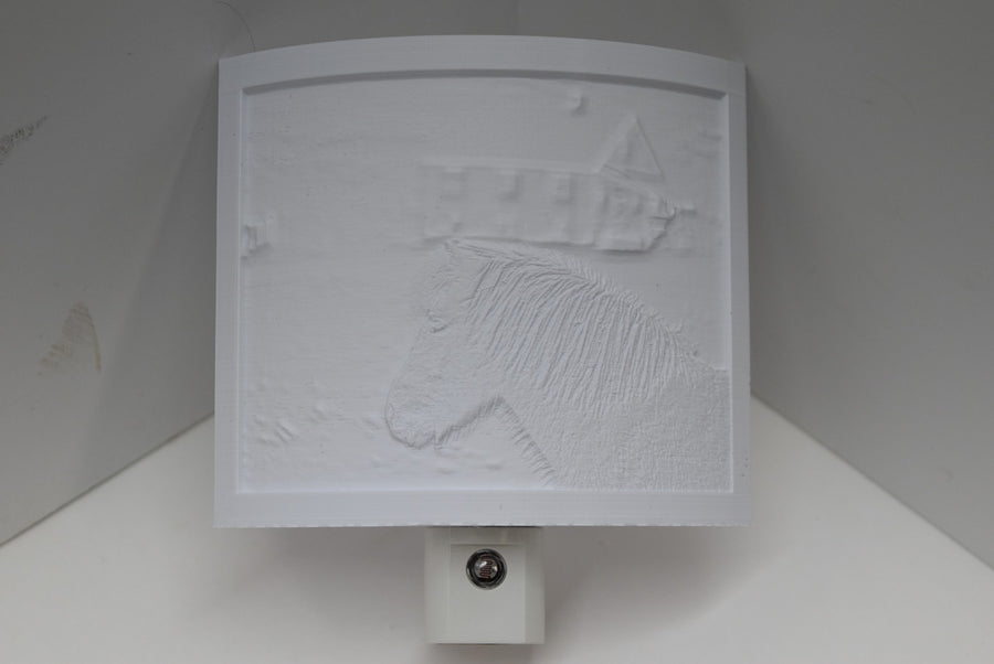 3D Printed Lithophane Night lighting Hand Painted LED Decor Light Photography