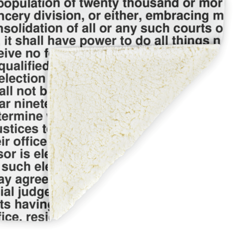 Alabama's Constitution alternate image