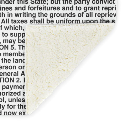 Delaware's Constitution alternate image