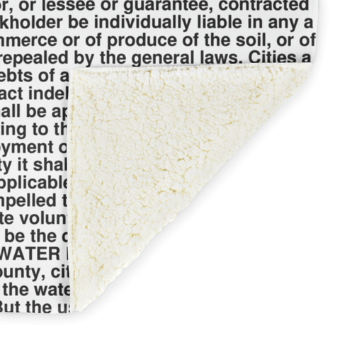 Idaho's Constitution alternate image