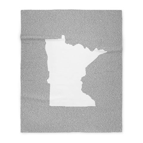 Minnesota's Constitution