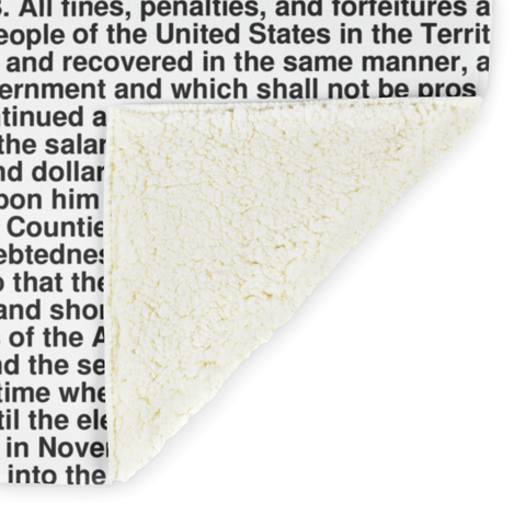 Nevada's Constitution alternate image