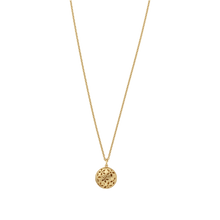 Load image into Gallery viewer, Power necklace - gold