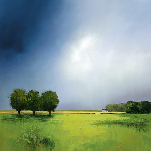 Barry Hilton | Green Fields of Home