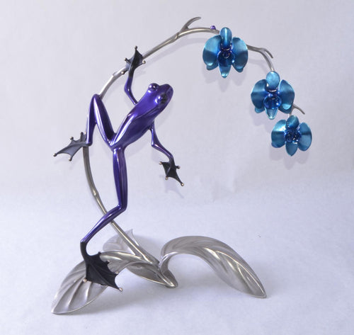 Frogman | Orchid