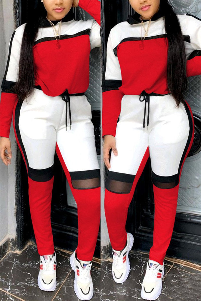Mesh Panel Long Sleeve Casual Two Piece Sets