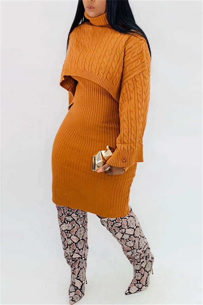 Turtleneck Solid Color Sweater & Dress