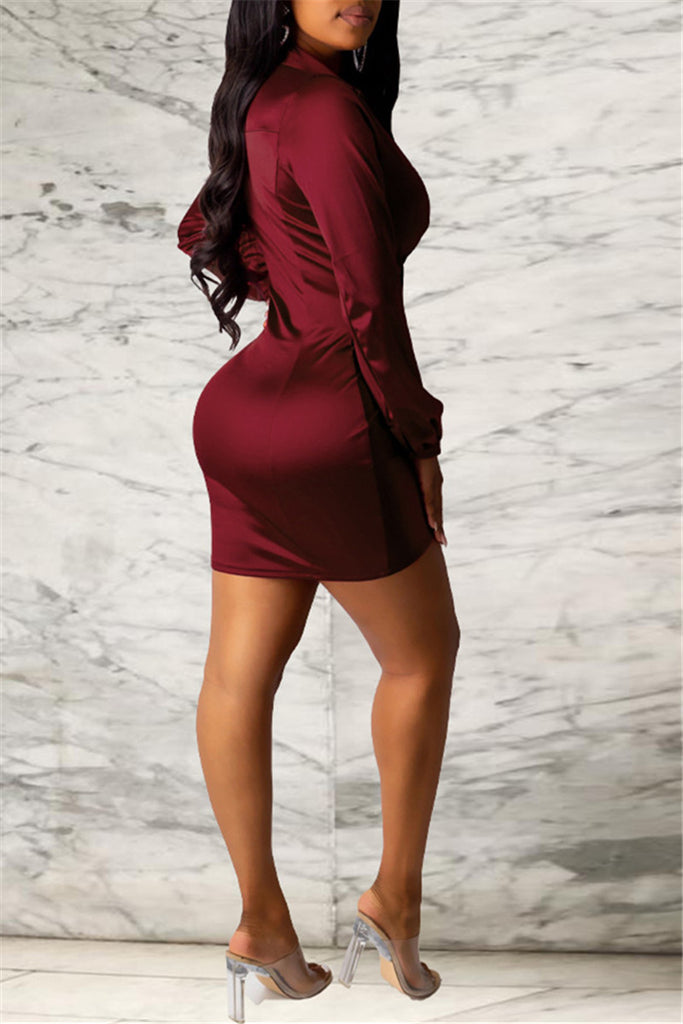Tie Up Long Sleeve Mini Dress
