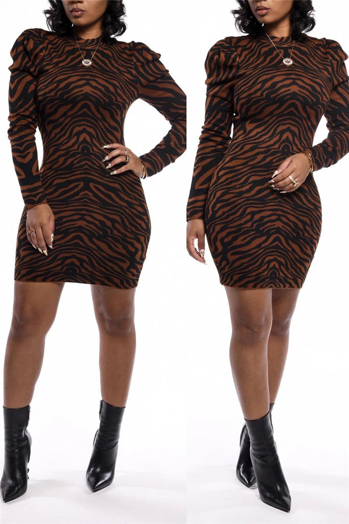 Zebra Print Long Sleeve Mini Dress