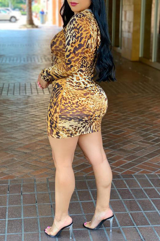Leopard Print Hooded Collar Two Piece Mini Dress
