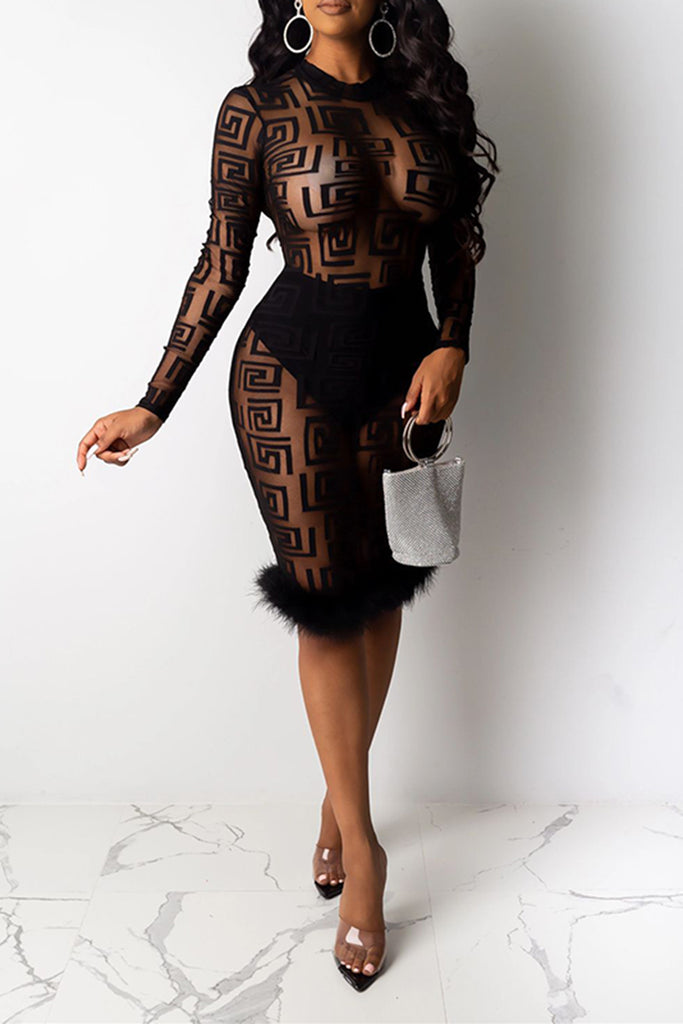 Feather Hem See-Through Long Sleeve Dress