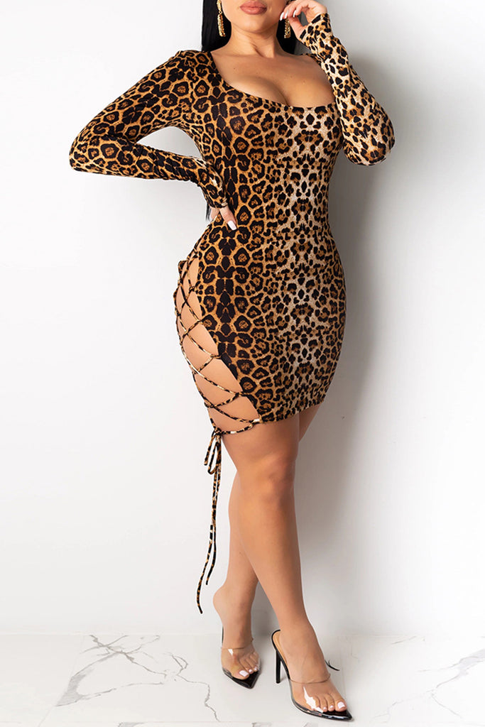 Leopard Print Bandage Scoop Neck Dress